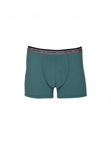 Herren Boxershorts - exklusive Merinowolle aquagrün